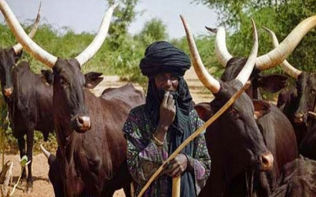 Photo of E/R: 5 Fulani, 3 locals die in clashes